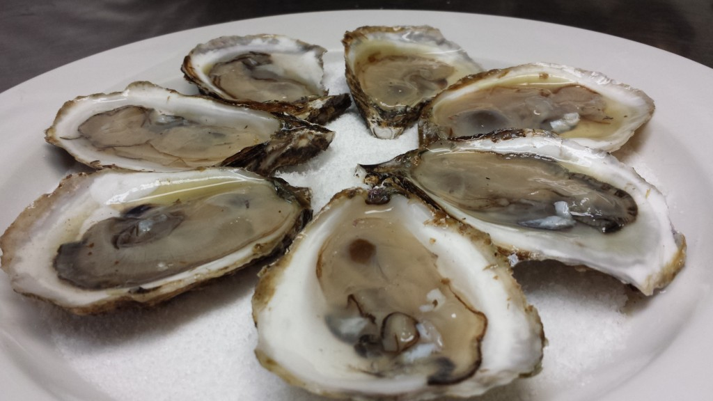 oysters on the half shell winifreds restaurant